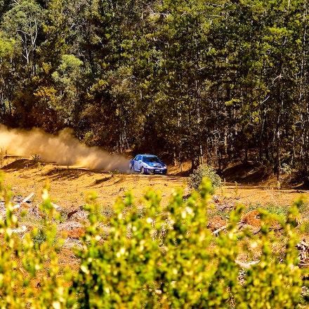 Forest_ Rally_2009_1300 - OLYMPUS DIGITAL CAMERA