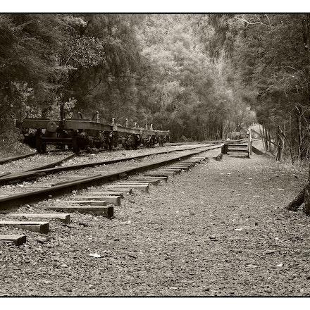 Railway_Siding_Sepia_02 - OLYMPUS DIGITAL CAMERA
