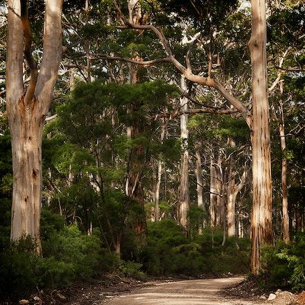 Landscapes Australian - Australian Landscapes