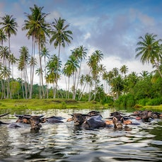Indonesia - A surf trip to the tropical island paradise of Simeulue, in the Aceh province of Indonesia.