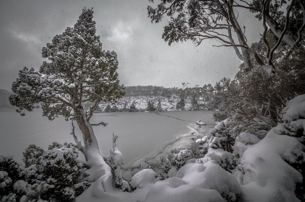 Snow falling at Dobson