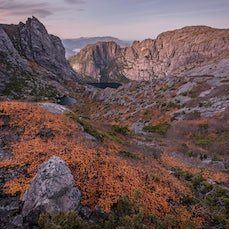 Mt Murchison, Tas - An overnight hike up Mount Murchison, in Tasmanias West Coast Range. Given that its Autumn, im expecting to hunt down some nice Nathofagus...
