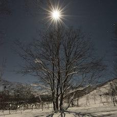 Japan 2016 - Snow in Japan, Nozawa Qnsen, Hakuba Cortina.