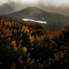 Mt Field National Park - Images captured in the beautiful Mount Field National Park, Tasmania.