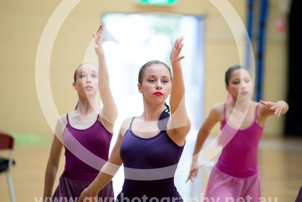 Bass Coast Ballet 2014 Performance