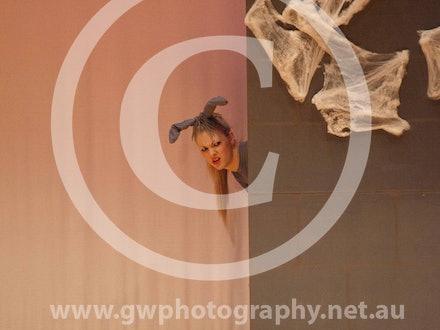 Dance Design Gallery 11 - Cast Photos