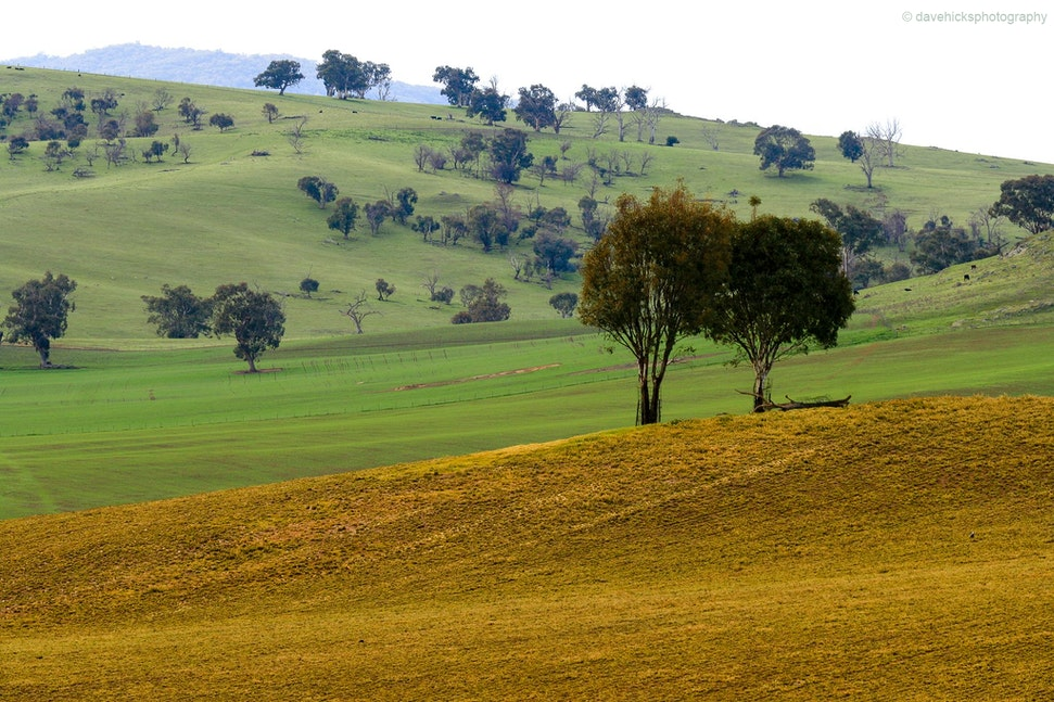 Khancoban, NSW - A lovely country scene taken just off the Alpine Way.