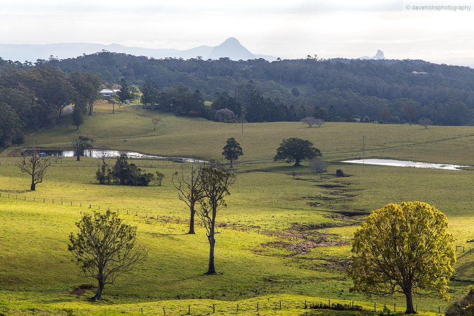 Mount Mee, QLD - Taken from the Mount Mee lookout looking towards the Glasshouse Mountains.