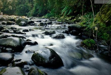 Allyn River, Barrington Tops National Park, NSW