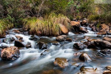 Micalong Creek, NSW