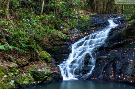Picnic Creek Falls, Kondalilla National Park, QLD