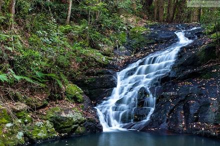 Picnic Creek Falls, Kondalilla National Park, QLD