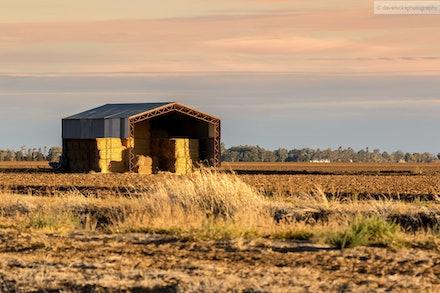 Hayshed near St. George, QLD