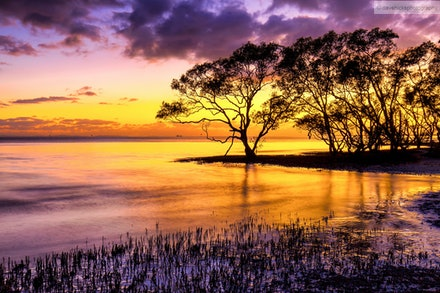 Nudgee Beach Sunrise No.1