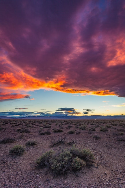 Desert Inferno