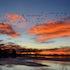 01 21 12 sunrise (2)