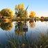 Jorgenson Project Autumn at Benson Park's Duck Pond