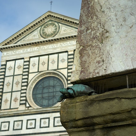 The tortoise was adopted as a symbol by Cosimo I. - Florence. I was intrigued by the tortoises holding up each corner of an obelisk statue. Cosimo I, who...