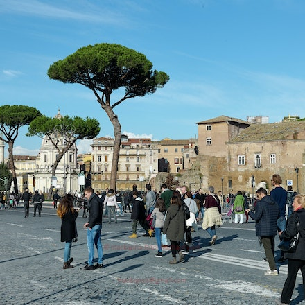 Near the Forum: Rome in winter