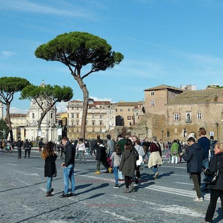 Near the Forum: Rome in winter