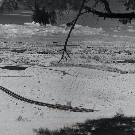 National Arboretum  - a 3-shot panorama - Near Infrared: 1 3-shot panorama in midday sun.