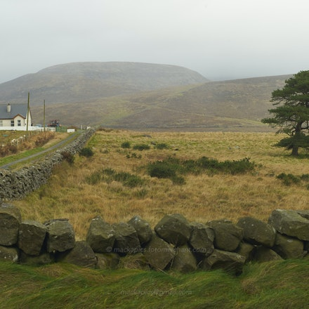 Near the Silent Valley, in winter - The Mountains of Mourne