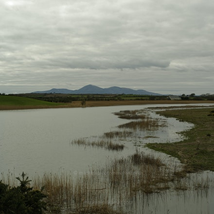 The Mournes from near Ardglass - County Down