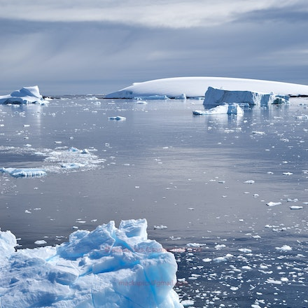 Blue ice, grey skies. - Blue ice near Lemaire Channel, Graham Land, Antarctica