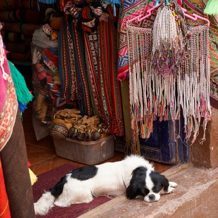 'Let sleeping dogs...' - Dog in a doorway, Pisac, Sacred Valley.