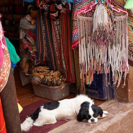 'Let sleeping dogs...' - Dog in a doorway, Pisac, Sacred Valley.