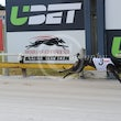 Albion Park 19 04 17 - Photos Taken By Toby Coutts