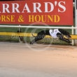 Albion Park 20 04 17 - Photos taken by Michael McInally and Toby Coutts