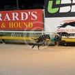 Albion Park 24 04 17 - Photos taken by Toby Coutts