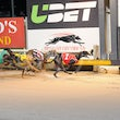 Albion Park 08 05 17 - Photos Taken By Toby Coutts