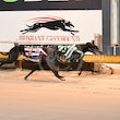 Albion Park 11 05 17 - Photos taken by Michael McInally and Toby Coutts