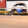 Albion Park 18 07 17 - Photos taken by Michael McInally, Toby Coutts and David McInally