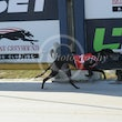 Albion Park 24 05 17 - Photos taken by Toby Coutts