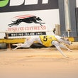 Albion Park 29 05 17 - Photos Taken By Toby Coutts