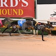 Albion Park 24 07 17 - Photos taken by Michael McInally and Toby Coutts