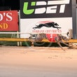 Albion Park 31 07 17 - Photos taken by Michael McInally and Toby Coutts