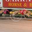 Albion Park 28 08 17 - Photos taken by Michael McInally