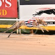 Albion Park 07 09 17 - Photos taken by Michael McInally