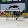 Albion Park 20 09 17 - Photos Taken By Toby Coutts