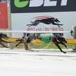 Albion Park 04 10 17 - Photos taken by Toby Coutts