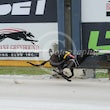 Albion Park 15 11 17 - Photos Taken By Toby Coutts