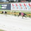 Race 1 Vanderweghe