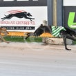 Albion Park 14 12 17 - Photos taken by Michael McInally and Toby Coutts