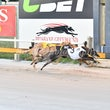 Albion Park 08 02 18 - Photos taken by Michael McInally