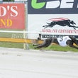 Albion Park 21 02 18 - Photos Taken By Toby Coutts
