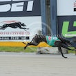 Albion Park 21 03 18 - Photos Taken By Toby Coutts
